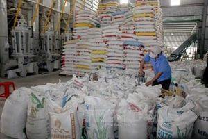 Xuất khẩu gạo Việt Nam thắng lớn trong năm 2020
