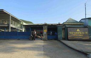 Vi phạm về môi trường, một doanh nghiệp ở Bình Định bị phạt 210 triệu