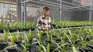 Đàm Rồng Nghệ: 8X bỏ kinh doanh, theo đuổi trồng hoa lan