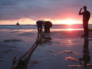 'Chốt' thời điểm sửa tuyến cáp quang biển APG