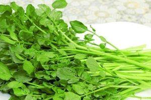 Công dụng chữa bệnh tuyệt vời của rau cải xoong