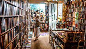 Giải thưởng văn học: Khoảng cách giữa nhà phê bình và thị hiếu độc giả