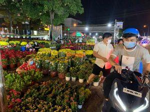 TP.HCM khuyến khích người dân mua hoa các nhà vườn Đà Lạt