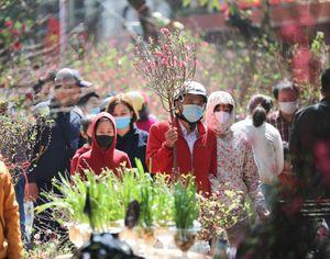 Trời Hà Nội chuyển nắng đẹp, người dân náo nức đi chợ hoa truyền thống