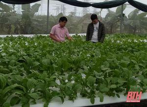 Huyện Nông Cống phát triển nông nghiệp bền vững