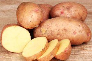 5 thực phẩm ăn thoải mái mà không lo tăng cân