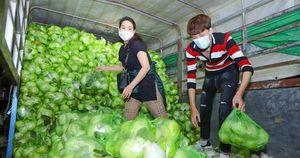 Nghệ sĩ Việt thức xuyên đêm bốc vác 20 tấn nông sản giúp Hải Dương