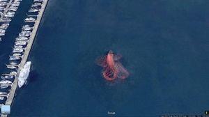 'Bạch tuộc khổng lồ' và những thứ kỳ lạ trên Google Maps
