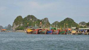 Vụ thi thể 2 vợ chồng ngư dân trôi dạt trên vịnh Bái Tử Long: Nạn nhân mới đi làm được một ngày