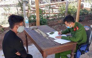 Điều tra vụ phá rừng cộng đồng ở huyện Mang Yang, Gia Lai