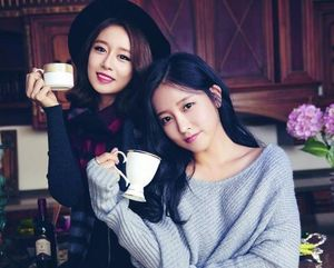 Soyeon và Jiyeon (T-ARA) bị khủng hoảng 'tột độ' khi fan cuồng đột nhập nhà riêng và dọa giết