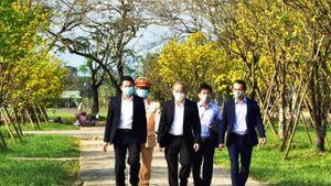 Thừa Thiên-Huế: Phát động phong trào 'Mai vàng trước ngõ'