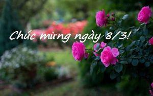 Lời chúc 8/3 ý nghĩa cho mẹ, vợ, người yêu và đồng nghiệp