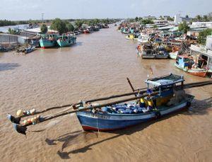 Ngư dân Bạc Liêu phấn khởi vì trúng mùa ruốc