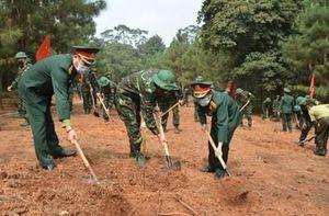 Phát động trồng 300 cây xanh tại Khu di tích K9
