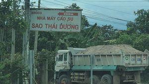 Bình Thuận: Xe chở khoáng sản 'lậu' phá nát đường đê