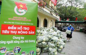 Làm gì để chủ động giải cứu nông sản: Chuyện từ Đài Loan