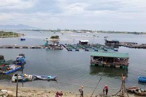 Cam Ranh: Yêu cầu di dời lồng bè, đăng rớ ra khỏi vùng nước cấm