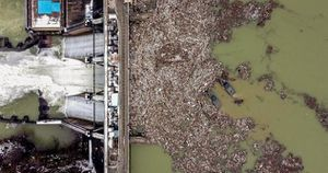 Hơn một nửa dân số thế giới sẽ sống ở các khu vực thiếu nước sạch vào năm 2050