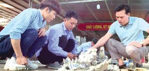 Bắc Ninh: Người 'kéo dài tuổi thọ' di tích