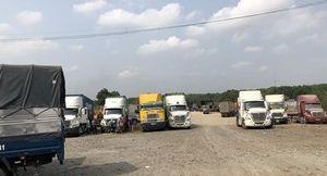 Cần xử lý các bãi xe container 'chui' ở Bình Dương