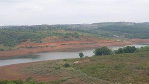 Xử phạt 2 đối tượng tự ý mở đường lấp hơn 5.000m² rừng bán ngập