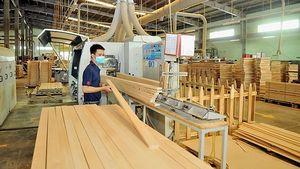 Xúc tiến thương mại mở rộng thị trường trong nước và xuất khẩu