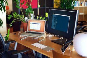 Cách bài trí phòng làm việc giúp mọi sự suôn sẻ, sự nghiệp thăng tiến