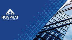 Thị trường chứng khoán trong nước : Báo cáo cập nhật CTCP Tập đoàn Hòa Phát