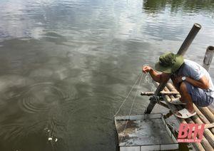 Chăm sóc thủy sản vụ xuân hè