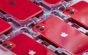 iOS 14.5 mang đến thay đổi đáng mừng cho người dùng iPhone 11, 11 Pro và 11 Pro Max