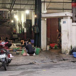 Hà Nội: Lò giết, mổ gia súc ngang nhiên hoạt động không phép