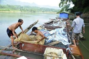 Cần thực hiện quan trắc môi trường nuôi thủy sản