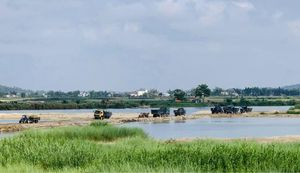 Thông tin lý do giá cát tăng cao ở Quảng Ngãi