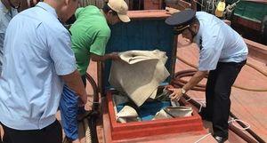 2 tàu đánh cá cải trang chở gần 200.000 lít dầu nghi nhập lậu