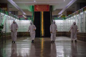 Báo Triều Tiên cảnh báo dịch kéo dài vì vaccine không phải 'thần dược'