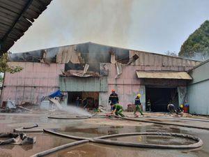 Bình Dương: 'Bà hỏa' thiêu rụi nhiều tài sản tại công ty sản xuất nội thất
