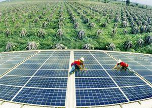 Phát triển năng lượng tái tạo: Những tín hiệu tích cực