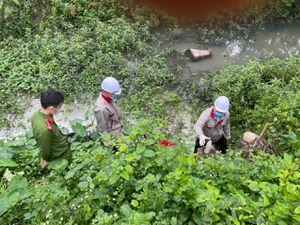 Xả nước thải ra môi trường, chi nhánh công ty sản xuất gốm xứ bị phạt