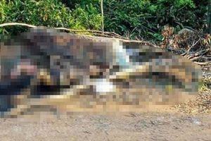 Hà Tĩnh: Điều tra nguyên nhân người đàn ông chết cháy dưới chân núi Nam Giới