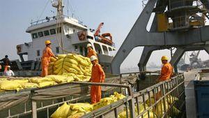 Thêm nghịch lý logistics Việt: Ai hưởng lợi ở cảng biển?