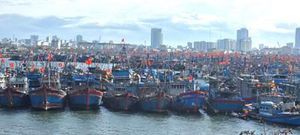 Ngư dân miền Trung sẵn sàng đi bầu cử