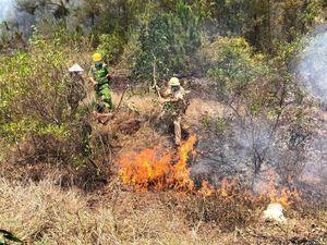 Các tỉnh miền Trung tăng cường các biện pháp phòng chống cháy rừng