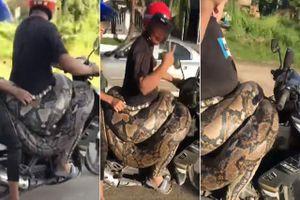Quấn chú trăn 200kg quanh người đi dạo phố, người đàn ông khiến bà con náo loạn vì lòng tốt của mình