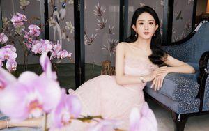 Triệu Lệ Dĩnh thanh tao trong váy hồng thướt tha, xinh đẹp bất chấp camera thường