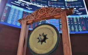 VAFI: 'Cần mở chiến dịch làm sạch thị trường chứng khoán'