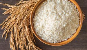 Xuất khẩu gạo Việt Nam tháng 5 giảm gần 20% về lượng và giảm hơn 20% về giá trị so với tháng trước