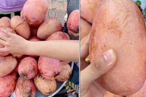 Quả xoài màu hồng lên sóng thanh niên hỏi bị netizen dọa xanh mặt