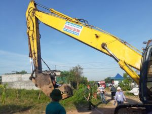 Hải Phòng cưỡng chế 159 công trình vi phạm tại khu đất 9,2ha phường Thành Tô