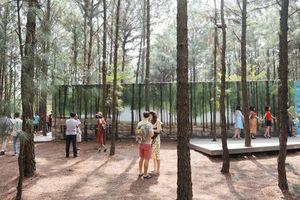 Choáng ngợp với Không gian nghệ thuật trong rừng